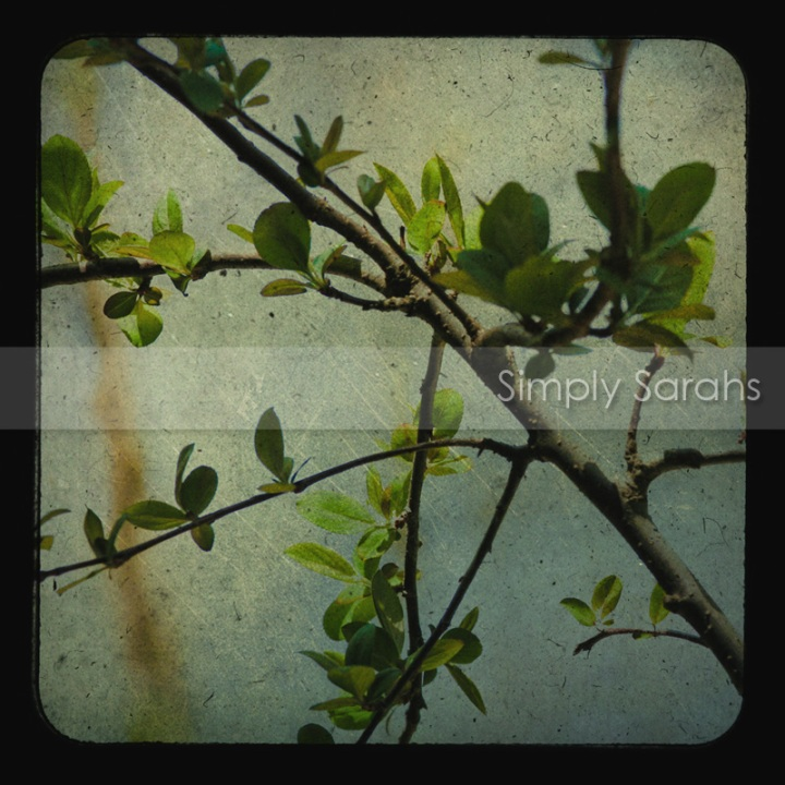 apple-tree-watermarked