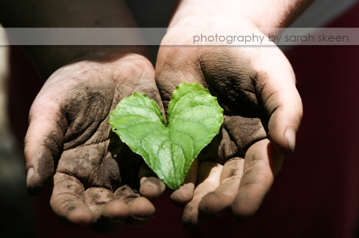 heart in her hand watermarked